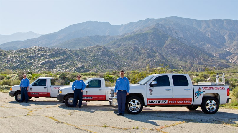 Mr. Beez Pest Control - Palm Springs